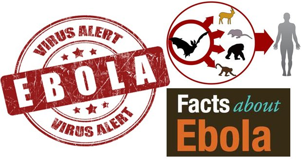 Ebola-Virus-Facts