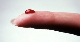 Why are People With Blood Type O So Special?